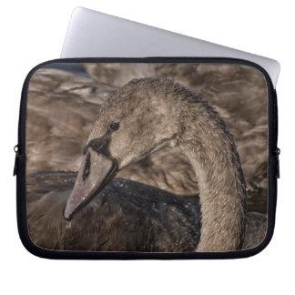 Mute Swan Cygnet Laptop Sleeve