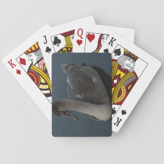 Mute Swan Cygnet Playing Cards