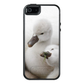 Mute Swan cygnets. OtterBox iPhone 5/5s/SE Case