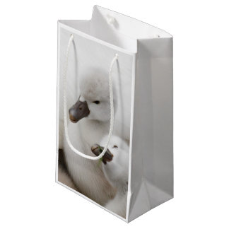 Mute Swan cygnets. Small Gift Bag