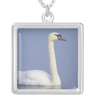 Mute Swan, Cygnus olor, adult in fog, Silver Plated Necklace