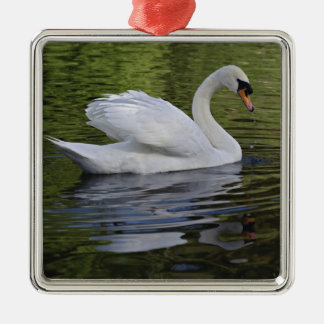 Mute Swan (Cygnus olor) Louisville, Kentucky 2 Christmas Ornament