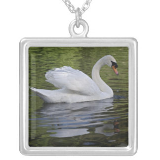 Mute Swan (Cygnus olor) Louisville, Kentucky 2 Silver Plated Necklace