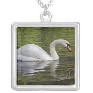 Mute Swan (Cygnus olor) Louisville, Kentucky Silver Plated Necklace
