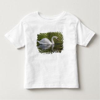 Mute Swan (Cygnus olor) Louisville, Kentucky Toddler T-Shirt