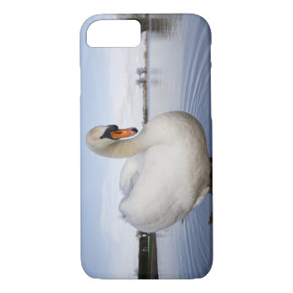 Mute Swan (Cygnus olor) on flooded field, iPhone 8/7 Case