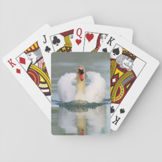 Mute swan in the pond poker deck