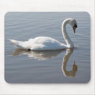 Mute Swan Mouse Mat