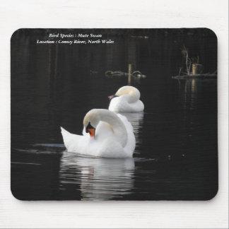 Mute Swan mousepad
