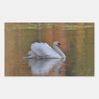 Mute swan on pond in autumn rectangular sticker