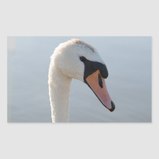 Mute Swan Rectangular Sticker