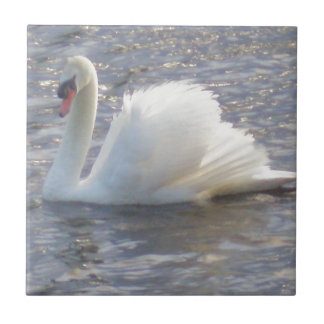 Mute Swan Swimming on the Lake Ceramic Tiles