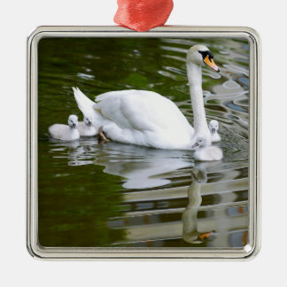 Mute swan with nestlings on water christmas ornament