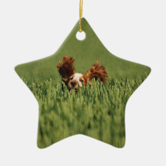 Mutley Christmas Ornament