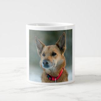 mutt dog with red collar jumbo mug