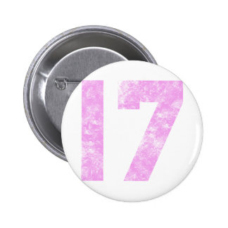 My 17th Birthday Gifts Pinback Button