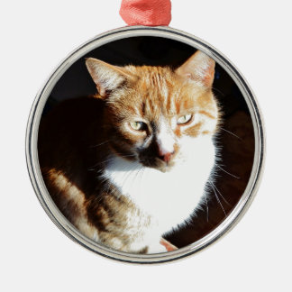My Affectionate Look Nutmeg. Christmas Ornament