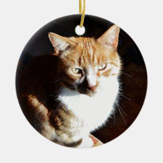My Affectionate Look Nutmeg. Christmas Ornament