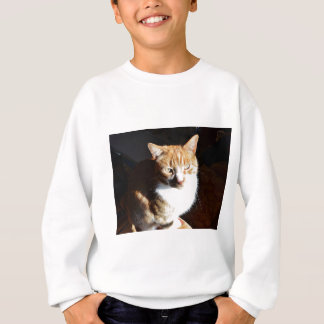 My Affectionate Look Nutmeg. Sweatshirt