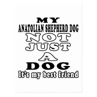 My Anatolian Shepherd dog Not Just A Dog Postcard