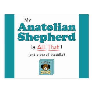 My Anatolian Shepherd is All That! Postcard