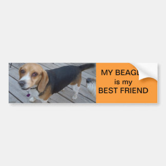 my Beagle is my best friend Bumper Sticker