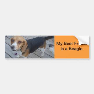 my Beagle is my best friend II Bumper Sticker