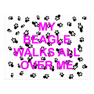 my beagle walks on me postcard