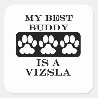 My Best Buddy is a Vizsla Square Sticker