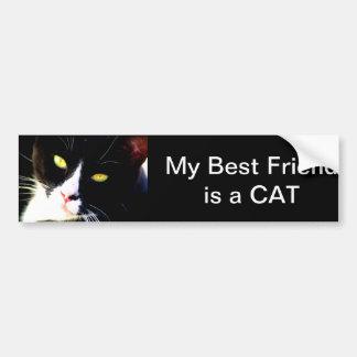 My Best Friend is a Cat Bumper Sticker