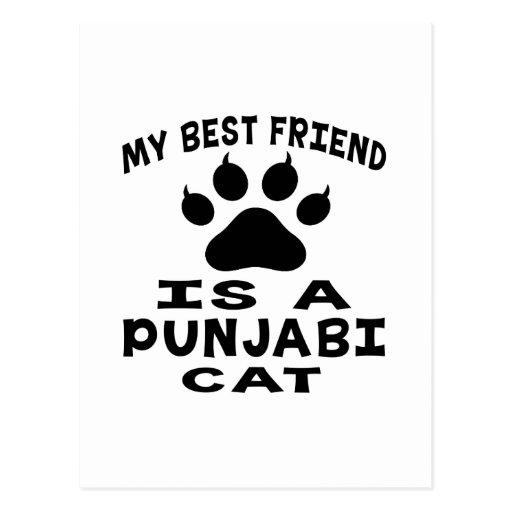 My Best Friend Is A Punjabi Cat Post Card
