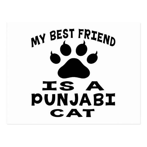 My Best Friend Is A Punjabi Cat Postcards