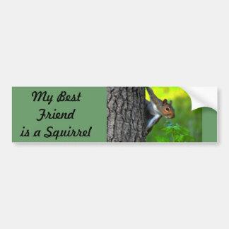 My Best friend is a Squirrel  II Bumper Sticker