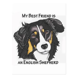 My Best Friend is a Tri-color English Shepherd Postcard