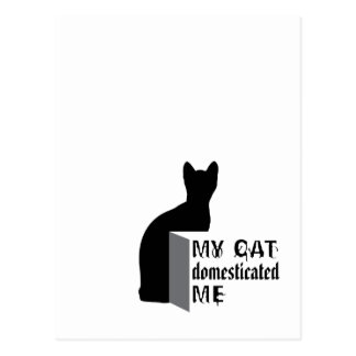 My cat Domesticated me Postcard