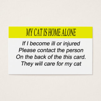My Cat is Home Alone