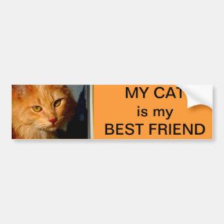 my Cat is my best friend Bumper Sticker