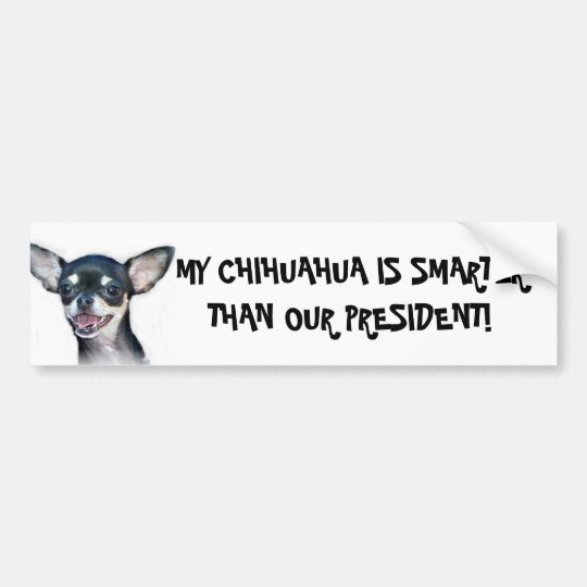 My Chihuahua is smarter bumper sticker