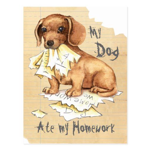 My Dog Does My Homework