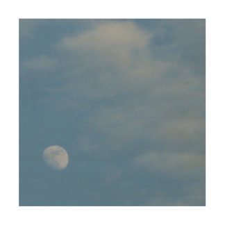 My Daytime Moon - Eco-Friendly WooSsnap Canvas Wood Wall Decor
