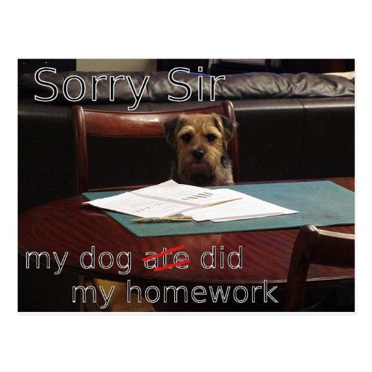 my dog ate my homework postcard