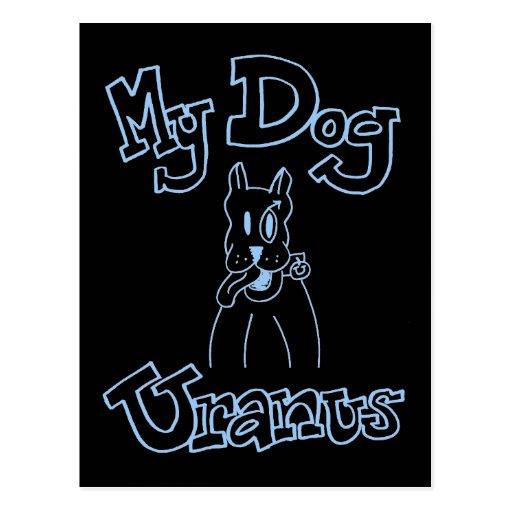 My Dog Uranus Postcard