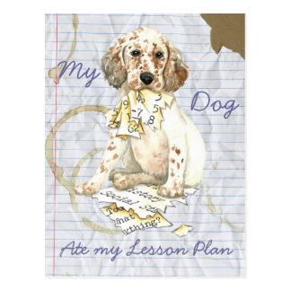 My English Setter Ate My Lesson Plan Postcard