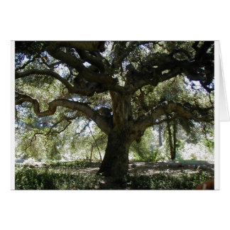 My Favorite Oak Tree Card