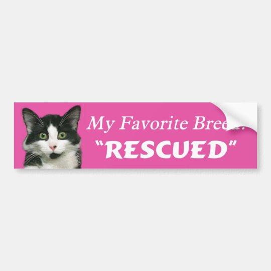 My Favourite Breed Cat Bumper Sticker