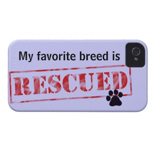 My Favourite Breed Is Rescued iPhone 4 Case-Mate Case