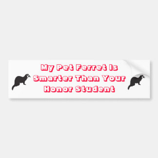 My ferret is smarter bumper sticker