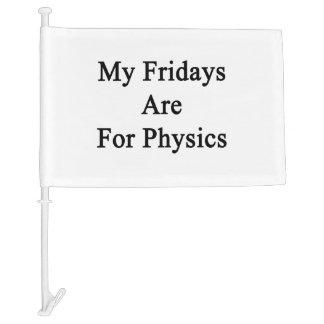 My Fridays Are For Physics Car Flag
