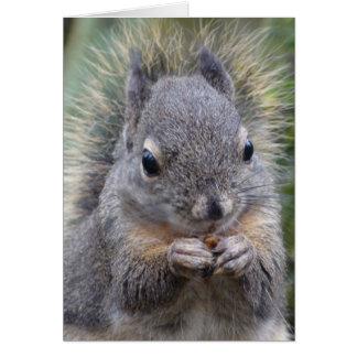 My Friend Fuzzy Greeting Card