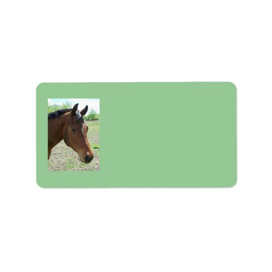 My Friend, The Horse Address Labels